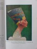 art in the western world david robb jj garrison vintage book