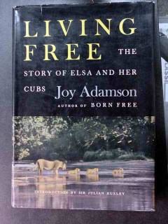 living free elsa and her cubs joy adamson 1st edition book