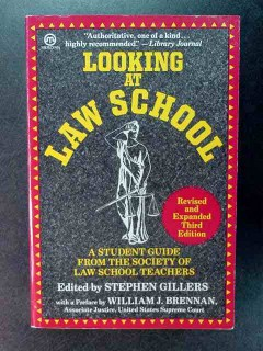 looking at law school stephen gillers student guide book