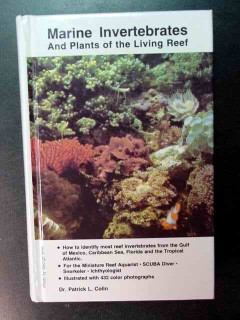 marine invertebrates and plants of living reef patrick colin book