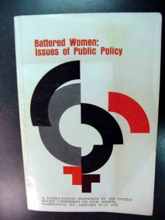 battered women public policy civil rights book