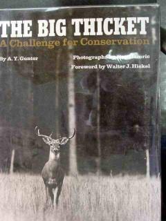 big thicket by ay gunter texas book