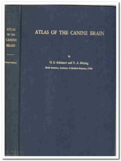 atlas canine brain vintage 1959 Adrianov Mering dog dissection book