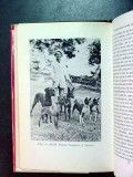 animals all famous mostly friendly joan palmer book