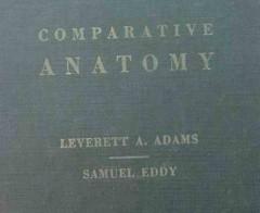 comparative anatomy adams and eddy vintage medical book