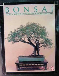bonsai peter chan art of growing keeping miniature trees guide book