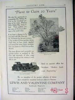 lewis valentine company 1929 william coe oyster bay li tree vintage ad