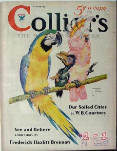 colliers 1934 lawson wood macaw cockatoo parrots cover print