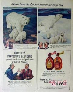 calvert distillers 1940 nature protects polar bear whiskey vintage ad
