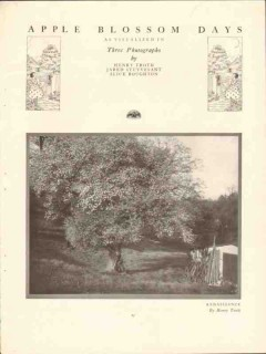 apple blossom days 1917 troth stuyvesant boughton photos vintage print