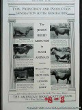 american jersey cattle club 1926 dairy cow show ring vintage ad
