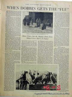 when dobbin gets the flu 1918 horse grip ce gapen farm vintage article