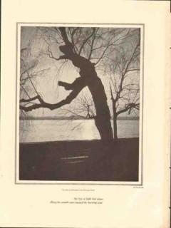 arlington from potomac park 1928 horydczak photogravure print