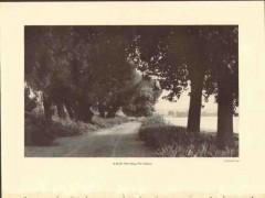 bridle path along potomac 1928 harold gray photogravure print