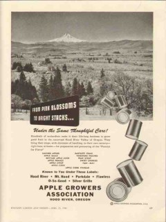 apple growers assn 1946 hood river valley pink blossoms vintage ad