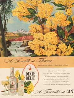 continental distilling co 1946 oregon grape dixie belle gin vintage ad