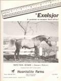 hospitality farms 1972 exelsjor larry black arabian horse vintage ad