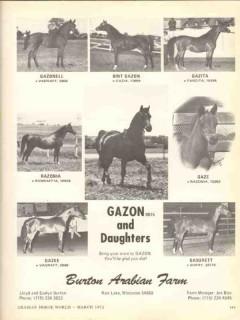 burton arabian farm 1972 gazon daughters gazonell gazita vintage ad