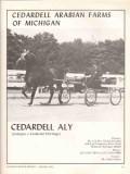 cedardell arabian farms michigan 1972 aly juleppa horse vintage ad