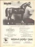 brierwood arabian farms 1972 bolero santa ynez solvang ca vintage ad