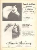 award arabians 1972 eleuzis ferdine equestrian horse vintage ad