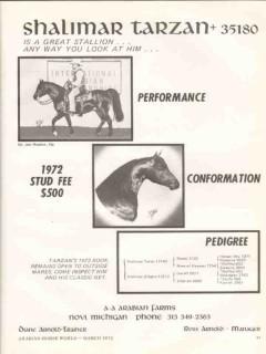 a-a arabian farms 1972 shalimar ross arnold tarzan novi mi vintage ad