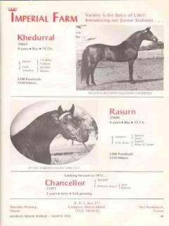 imperial farm 1972 khedurral rasurn chancellor stud horse vintage ad