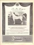 lancer arabians 1972 na-ibn-sotep naborr equestrian horse vintage ad