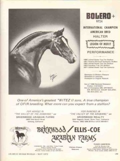 brierwood arabian farms 1972 ellis-coe bolero stud horse vintage ad