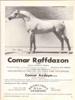 bromlings hi tam arabians 1972 comar raffdazon equestrian vintage ad