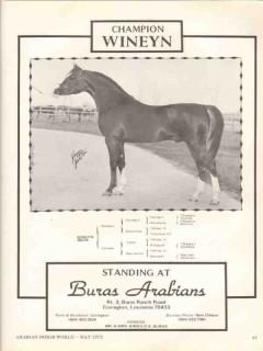 buras arabians 1972 wineyn kaneyn candee equestrian horse vintage ad