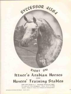 ittners arabian horses 1972 syccessor right on equestrian vintage ad