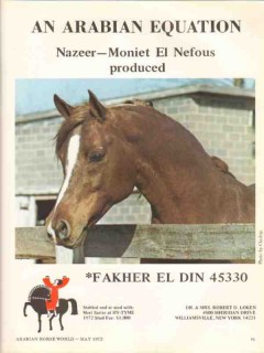 hy-tyme 1972 fakher el din nazeer moniet arabian stud horse vintage ad