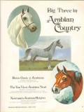 betts circle 2 arabians 1972 van vleet newmans stud horse vintage ad
