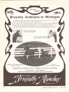 brusally ranches 1972 ed tweed gay farms mi arabian horse vintage ad