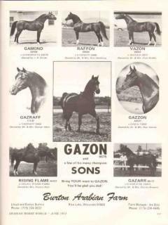 burton arabian farm 1972 gazon sons gamond vazon equestrian vintage ad
