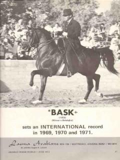 lasma arabians 1972 bask witraz balalajka stud equestrian vintage ad