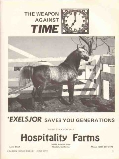 hospitality farms 1972 exelsjor weapon time arabian horse vintage ad