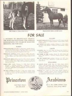 princeton arabians 1972 pri habib al rih shiga stud horse vintage ad