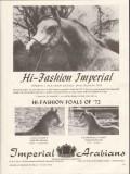 imperial arabians 1972 cassa-zanova ceaderdell-cameo foals vintage ad