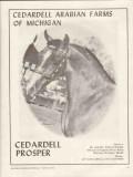 cedardell arabian farms michigan 1972 prosper stud horse vintage ad