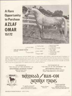 brierwood arabian farms 1972 azlaf omar equestrian horse vintage ad