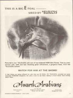 award arabians 1972 eleuzis hmr bint ranee stud equestrian vintage ad