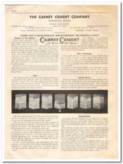 Carney Cement Company 1933 Vintage Catalog Colored Brick Tile Mortar
