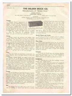 Belden Brick Company 1933 Vintage Catalog Service Color Texture Size