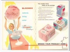 Bloomer Bros Company 1959 Vintage Ad Ice Cream Package Natural Color