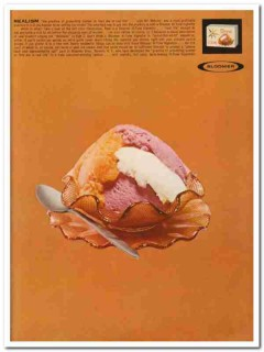 Bloomer Bros Company 1960 Vintage Ad Ice Cream Package Realism
