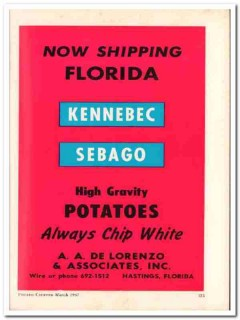 a a de lorenzo associates inc 1967 kennebec sebago potatoes vintage ad