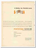 Abbott Laboratories 1959 vintage medical ad Pentothal Sodium